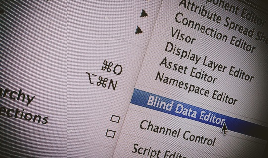 using blind data in maya