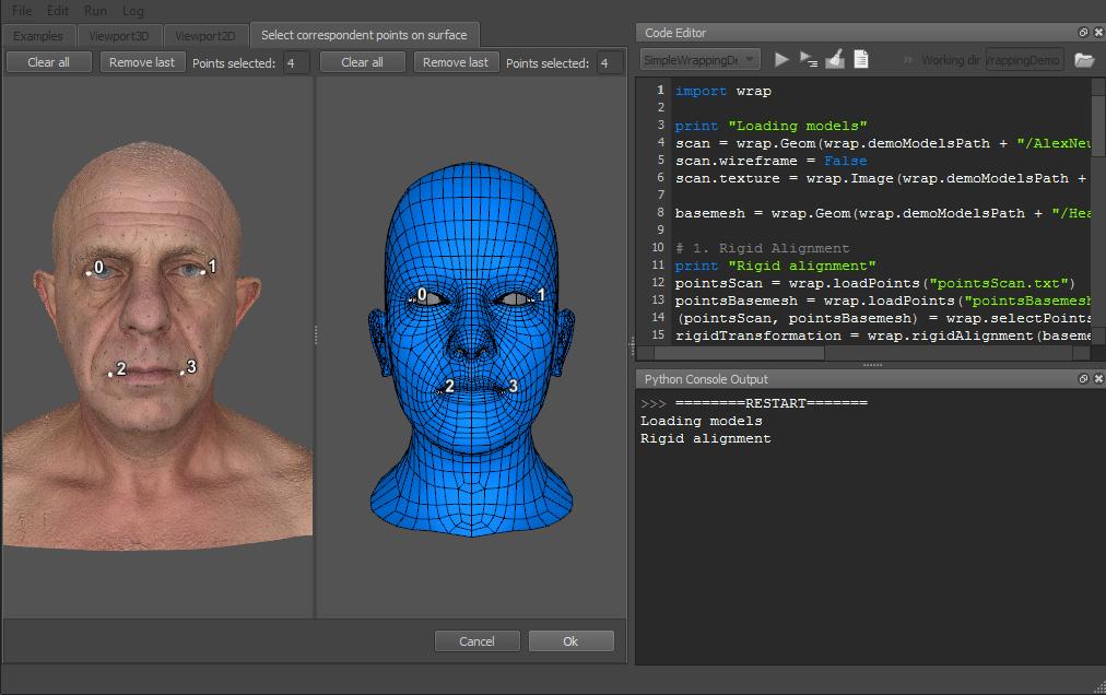 WrapX 3D scan processing python API