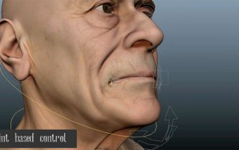 Facial Rigging Based on FACS Theory from Siting Liu