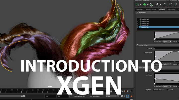 Learn the Basics of Xgen Grooming