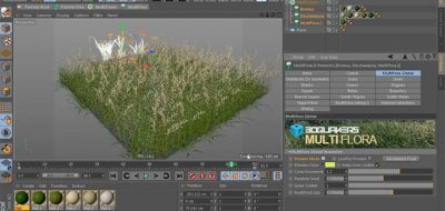 Creating a Realistic Tree, Using Forester for C4D - Lesterbanks
