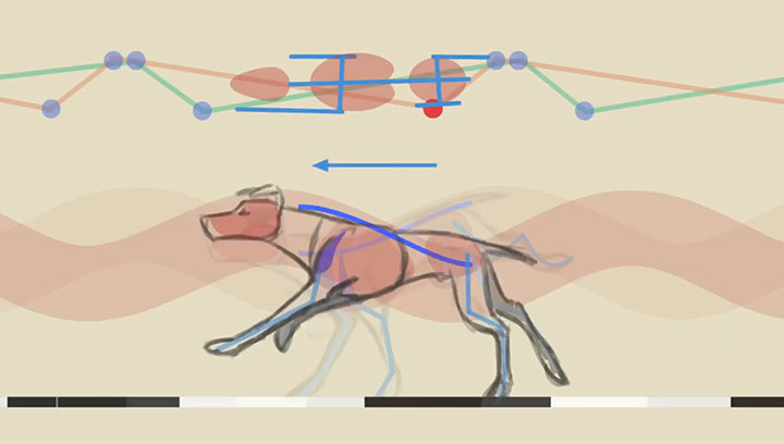 Quadruped Locomotion: Animating Walks, Trots and Gallops