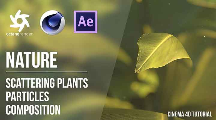Creating and Rendering Vegetation With Octane Scatter in C4D